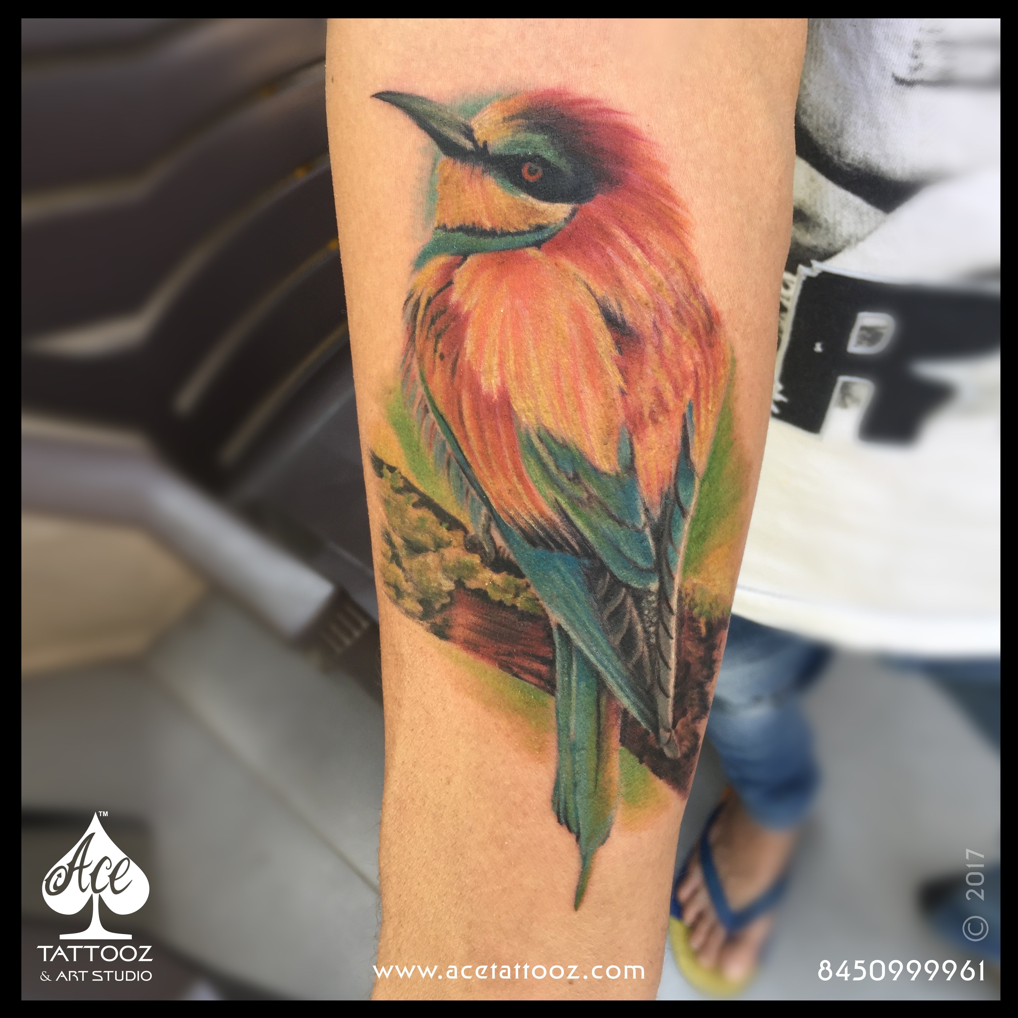 Colourful Bird Tattoo