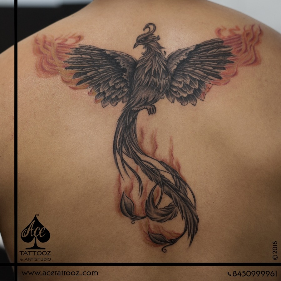 Phoenix Back Tattoo Designs for Men